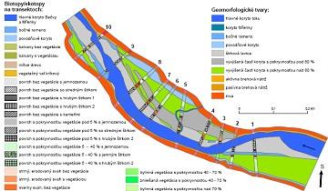 Mapa biotopů zkoumaného území